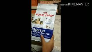 Royal canin dog food review best feed for your dog