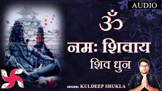 ॐ नमः शिवाय ओम नमः शिवाय    Om Namah Shivaya - Shiva Bhajan