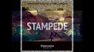 Dimitri Vegas & Like Mike vs DVBBS & Borgeous - Stampede (Official Music Video)