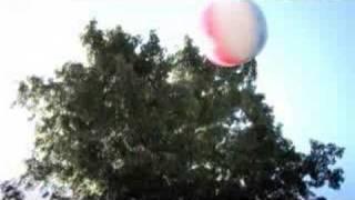 Dropkick Murphys  The State Of Massachusetts Official Music Video