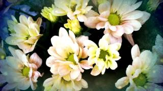 Magic Flower - 2002