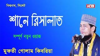 Bangla Waz Mahfil |শানে রিসালাত |Mowlana Golam Kibria-Dowlatpur