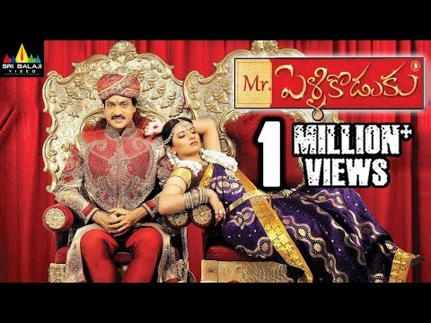 Mr.PelliKoduku Telugu Full Movie | Latest Telugu Full Movies | Sunil, Isha Chawla