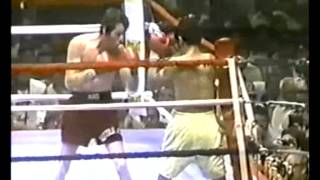 Danny Lopez vs Mike Ayala [Fight of the Year 1979]