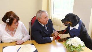 Jealous Rottweiler Best Man Interrupts Wedding With Sneeze