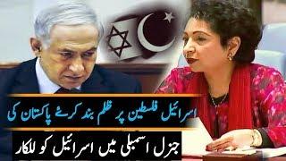 ڈاکٹر ملیحہ لودھی نے فلسطین کے حق میں تقریر کر دی   اسرائیل پریشان