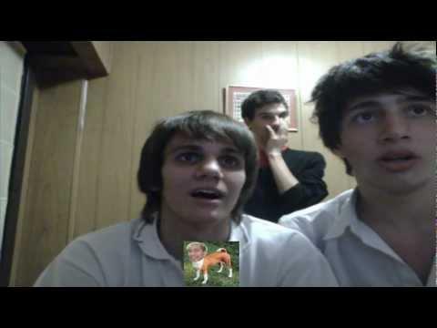 Reacción 2 guys 1 horse & 2 girls 1 cup ♥