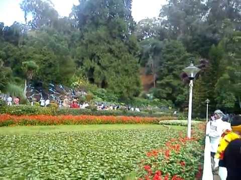 ooti garden
