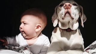 This Adorable Baby is an Animal Whisperer | The Scene