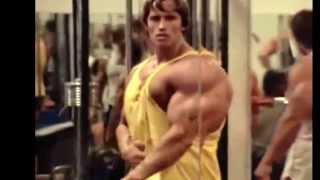 Arnold Schwarzenegger and The ROCK   Bodybuilding