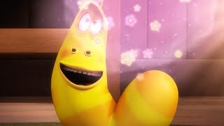 LARVA - THE FLOWER POWER | Larva 2018 | Cartoons For Children | Funny Animation | LARVA Official