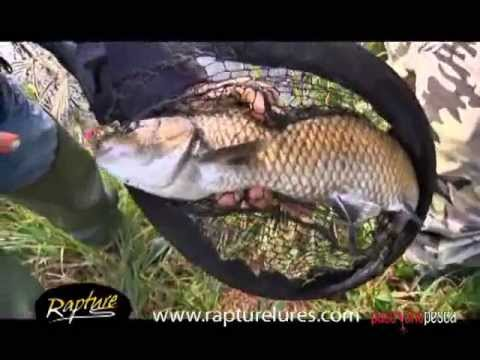 Rapture Lures Spinning Emozioni Ultralight Part 1