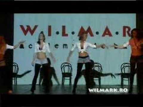 Wilmark Academia De Baile Adulti Reggaeton