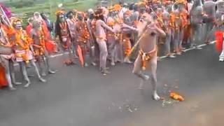 नागा बाबा उज्जैन सिंहस्थ कुंभ