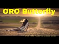 oro butterfly  (rox Bwoy) - PNG music 2017