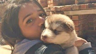 Kadın Küçücük Bir Köpeği Evlât Edindi ama köpek büyüyünce herkesin ağzı açık kaldı