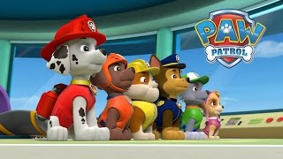 Paw Patrol Nick Jr Coloring Game I Learning Colouring with Kids Games