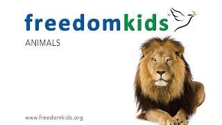 Animals (Promo short) |  Freedom Kids