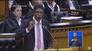 Blade is out of Order. Hlengwa