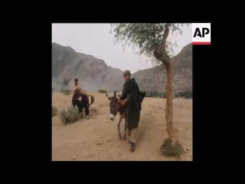 Hashish making in Afghanistan!