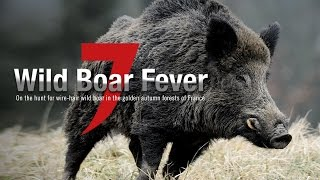 Wild Boar Fever 7 - Hunters Video