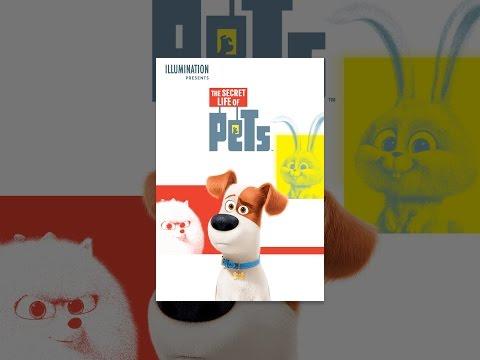 Xxx Mp4 The Secret Life Of Pets 3gp Sex