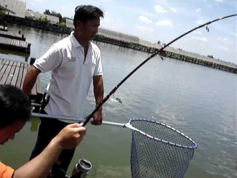 100 KG Giant Mekong Catfish Fishing Thailand Bungsamrun PART 11