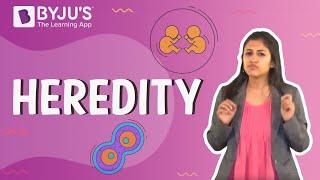 Heredity and Evolution 02 - Heredity
