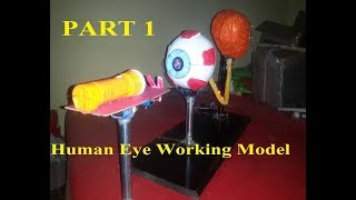 Human Eye Working Model || medical science projects||2017