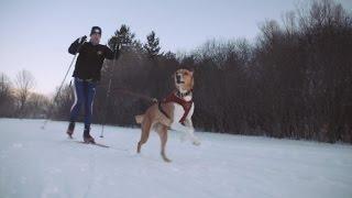 Skiing + man