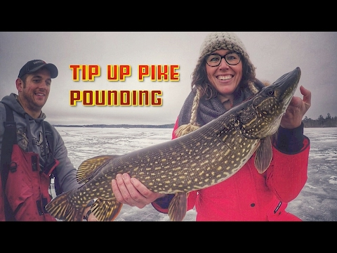 HOT ACTION Tip Up Ice Fishing Tricks for Pike