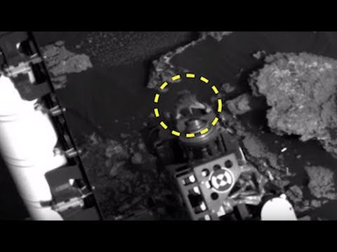 5 Alien Species Caught By Nasa On Mars 2