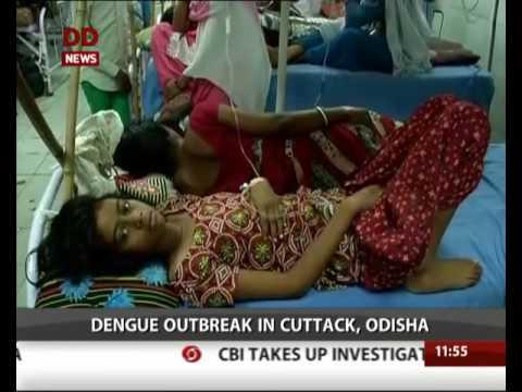 Dengue outbreak in Cuttack in Odisha