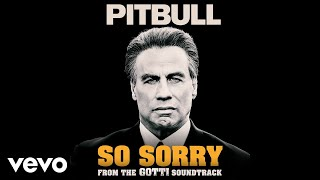 "Pitbull - So Sorry (From the ""Gotti"" Soundtrack)"