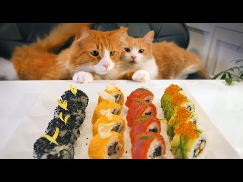 Xxx Mp4 A Japanese Take On American Sushi 3gp Sex