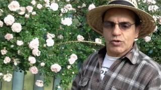 آموزش باغبانی با صابر پرورش گل سرخ و رز sabers farm