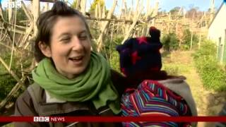 BBC News   Dutch chimps in Edinburgh Zoo learn to speak in Scottish accent