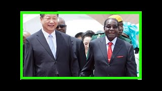 News-Zimbabwe: is the mugabes a curved Central results fall their muscles?