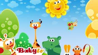 Canção Da Manhã - BabyTV Brasil