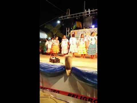 Xxx Mp4 Mujeres Mixtecas De Llano Grande De Juárez Mpio De Igualapa Gro 3gp Sex