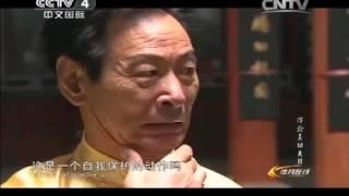 Experiencing Real Kung Fu: Nanquan 南拳