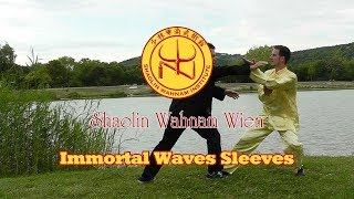 Wahnam Tai Chi Chuan - Kampfsequenz 1 (2017) - Immortal Waves Sleeves