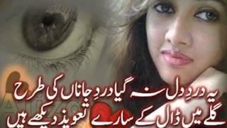 Tainu Mere Jina Pyar Koi Karega Ta Dasi - YouTube