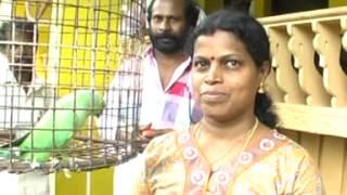 Thathamma Cherukunnu