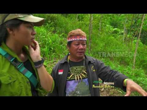 JEJAK PETUALANG MELIBAS BATAS INDONESIA MALAYSIA 7 3 17 3 2