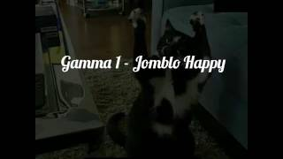 Gamma 1 jomblo happy