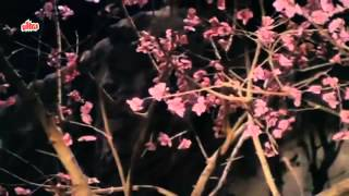 Mitwa Re O Mitwa   Meenakshi, Nitish Bharadwaj, Nache Nagin Gali Gali Song   YouTube