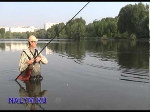 летняя рыбалка на москва реке