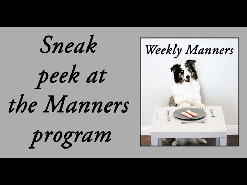 Does your dog have these manners? - Clicker dog training