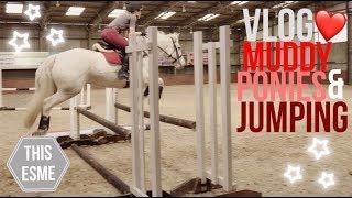 Vlog | Muddy Ponies & Showjumping | This Esme